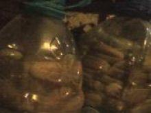 Ogórki kiszone wg joaska500