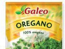 Oregano Galeo