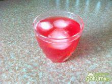orzeźwiająca woda z żurawiny