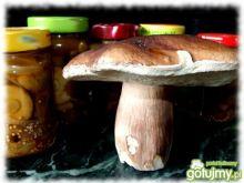 Ostra marynata do grzybów