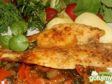 Panga na sosie pomidorowo-cebulowym