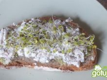 Pasta sardynkowo-serowa