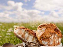 Pieczemy domowy chleb