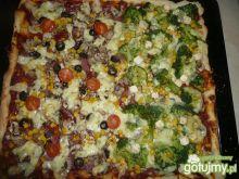 pizza 2 w 1