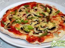 Pizza wg laluni