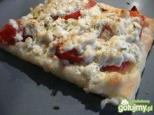 Pizza z białym serem wg Elfi
