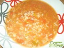 Pomidorowa z domowego przecieru