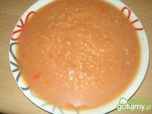 Pomidorowa z ryżem 5