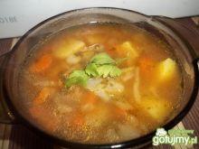 Pomidorowy kapuśniak