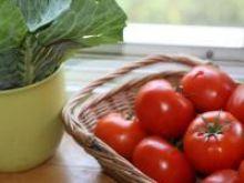 Pomidory w diecie