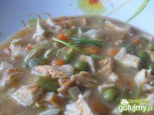 potrawka gyros z kurczaka