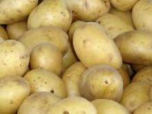 Przygotowanie pyz ziemniaczanych