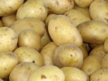 Przygotowanie ziemniaków na sałatkę.