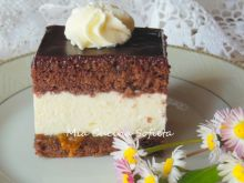 Pyszne ciasto W–Z, czyli WuZetka