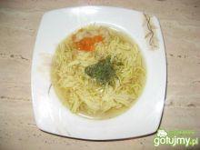 Rosół drobiowo-warzywny, chudy:)