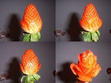 Róża w tajemniczym ogrodzie