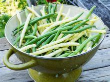 Jak obrać fasolkę szparagową?
