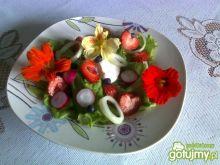 Sałatka dary ogrodu