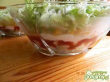 Sałatka kebab-gyros 6