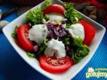 Sałatka prosta z sosem czosnkowym