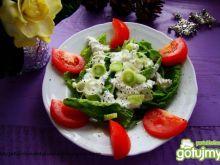 Sałatka z boćwiny z sosem serowym