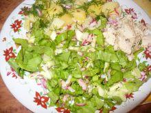 Sałatka z rzodkiewką i ogórkiem do obiadu