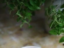 Salsa pomidorowo-paprykowa