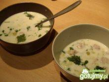Serowa zupa porowa