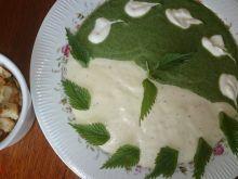 Serowo pokrzywowa zupa krem Eli