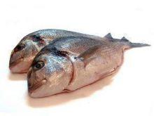 Sposoby przechowywania ryb