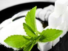 Stewia – naturalny słodzik wchodzi na nasz rynek