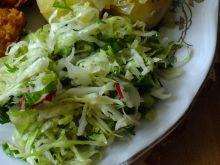 Surówka z młodej kapusty ze szpinakiem i rzeżuchą