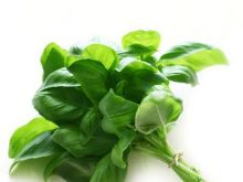 Świeże i cięte zioła - gdzie trzymać?