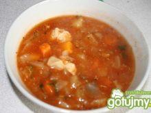 Syta  zupa warzywna