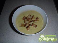 Szybka zupa - krem z serka topionego