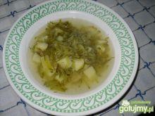 Tarta zupa ogórkowa