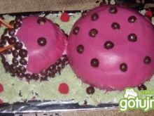 Tort Biedronka
