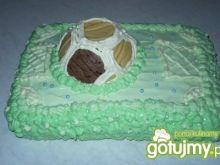 Tort-Boisko