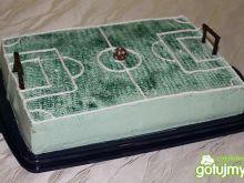 Tort boisko