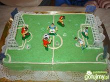 Tort boisko sportowe