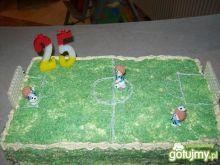 Tort Boisko wg madi