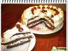 Tort Eli dla dorosłych
