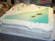 Tort Plaża z wydmami..