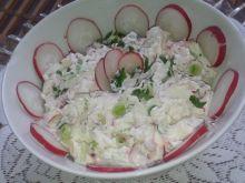 Twarożek z rzodkiewką i cebulką zieloną