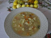 Warzywna zupa wg Megg