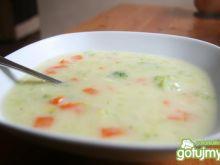 Wegetariańska zupa jarzynowa