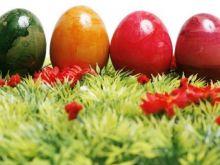 Wielkanoc w Tunezji lub na Kanarach