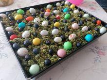 Wielkanocny leśny mech