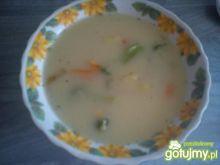 Wielowarzywna zupa