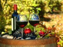 Winorośl nieodkryta